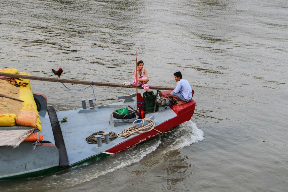 Hahn an Bord