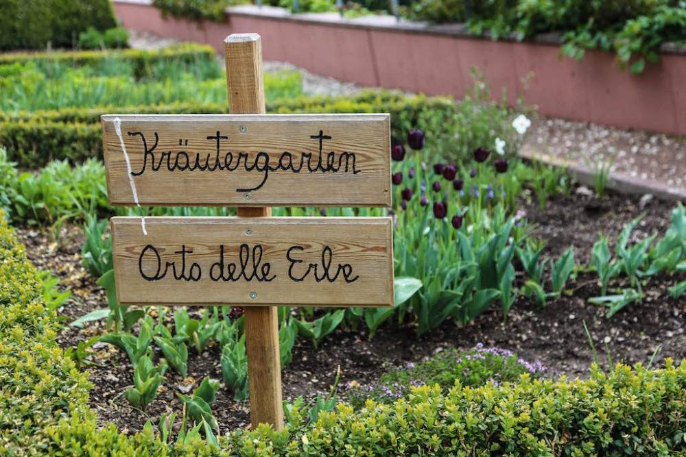 Entdeckungen im Kräutergarten