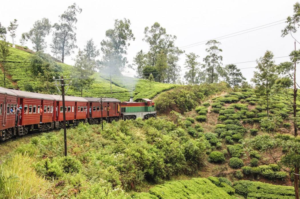 Fernreisen mit Kindern Sri Lanka